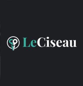 leciseau-digital-coiffure